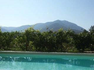 Villa con piscina in  uliveto