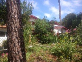 Grande maison familiale style landaise au Cap Ferret