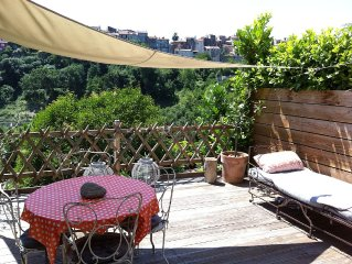 VILLA, 55 m2, BIOT, wood terrace, pool in private estate, facing south.