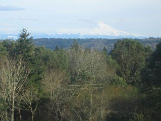 Gorgeous New And Centrally Located Home With A Spectacular View Of Mt Rainier