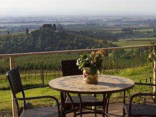 Vineyard Ridge: Best View in Oregon Willamette Valley Wine Country