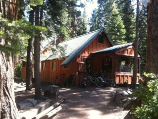 Serene Tahoe cabin bordering the National Forest