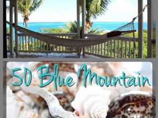 Ocean Views In Blue Mountain