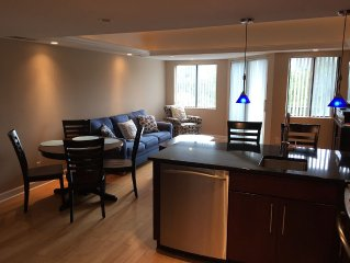 Luxurious Recently Renovated 1BR with Peek of the Ocean View!!!
