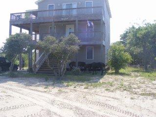Beach home,sand roads,wild horses