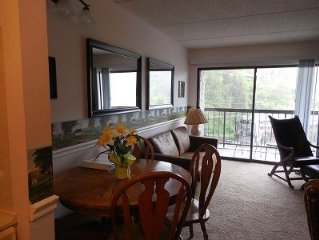 Super Special $82 per weeknight March 3 minute walk to downtown shop, restuarant