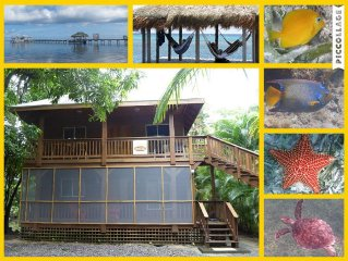 Two Bedroom Cabana, Close To Some Of The Best Snorkeling In The Caribbean