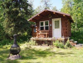 Rustic Little Dry Log Cabin