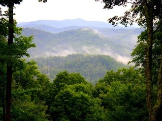 Log Cabin/1/2 hr Asheville LOng range views,covered deck/outdoor fireplace/pets