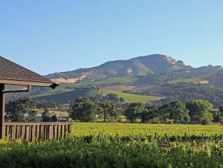 Vineyard Estate Home, Spectacular Views, Pool, Close to Wineries and Restaurants