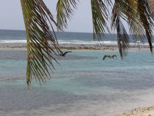 2 Bedroom On Beach With Deck -Snorkelers & Divers Paradise-Cayman Brac