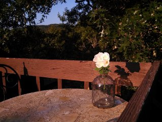 Romantic & Secluded Hill Country setting