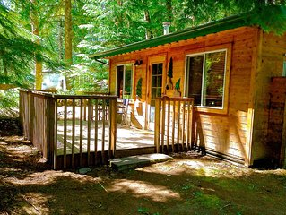 Mt Rainier Couples Cabin - Open Year Round!