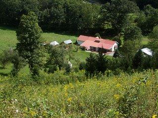 Serenity on the Virginia Creeper Trail