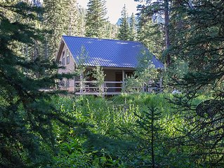 Brand New: Silver Willows Ursa Cabin on 4 Acres by the Creek