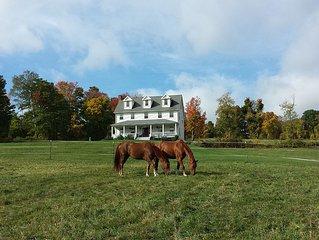 Farm House on beautiful old Horse Farm!!