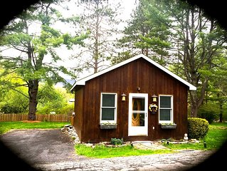 Coziest Catskills Cabin w/ Scenic Mountain View | 3 Min Walk to Town - Book Now!