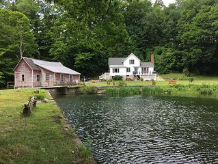 Case Mill-Secluded Berkshire farmhouse, mill, pond, waterfall, 28 acre forest.
