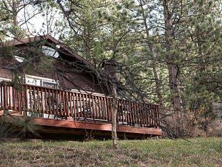 Cozy, comfortable Cabin in Glen Haven