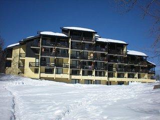 Appart avec acces ski facile , proche centre et activites aquatiques 44m2/6pers