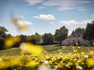 Your stay at Coeur des Vignes Burgundy