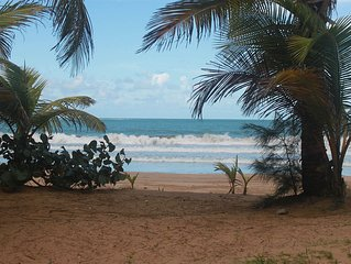 Vacation-Ready Apartment with Central Location Near the Beach & Rainforest