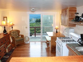 New Cozy Studio, beatiful inside & out, queen size bed,Jacuzzi tub, full kitchen