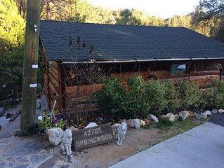 Near Yosemite and Bass Lake On Lewis Creek.  Pet friendly