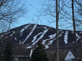 Cozy Snowbrook 4 BR Condo - Ski in - Ski out