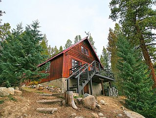 Star of the West - 5 MINUTES to Ski Cooper! Modern cabin on Lake!