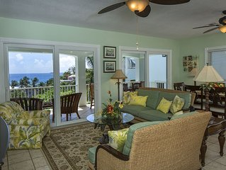 Affordable, Elegant, Comfortable - Great Views, Walk to Town!