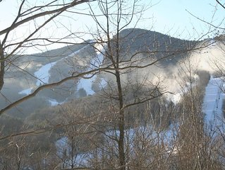 Charming Loon Mountain Condo