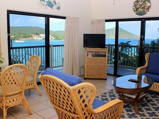Resort 1 Bedroom Oceanview Suite (resort privileges)