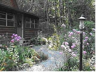 Romantic Cabin In The Woods,  2 Paved Miles To Mena, Ar, Jacuzzi Bath, Fireplace