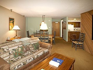 Room with a View,  two bedroom, 2 bath mountain condo, Aspen Creek #123, Walkin