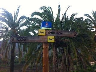 Silencio en un Oasis de Palmeras y Olivos a 25kms de las mejores playas. Wifi