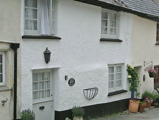 Traditional Devon Cottage Near Estuary of River Dart. Pet friendly. Free Wifi.