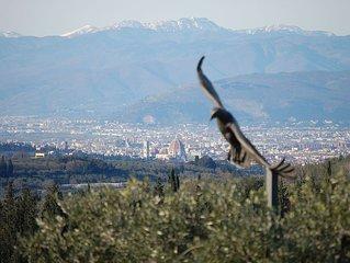Fattoria 'La Nutrice'- Villa storica, colline fiorentine - panoramica su Firenze