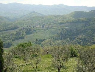 Villa de charme - voisin de Sting - Figline Valdarno