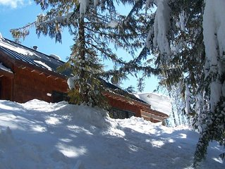 Marshall Cabin-WIFI-Ski In/Ski Out in Winter-discount Timberline lift tickets
