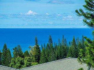Kapalua Golf Villa Elegant and Unique!