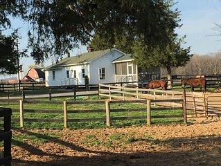 Elegant Cottage on 600 Acre Horse & Cattle Farm