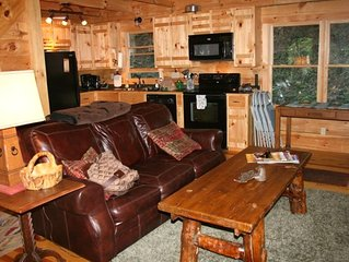 Log Cabin - Directly on the South Toe River