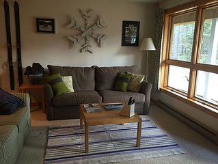 Great Snowbrook Condo In Excellent Location With All The Amenities