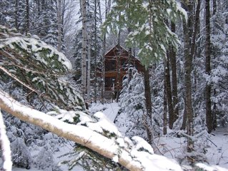 Custom Log Home with Lakeside Frontage