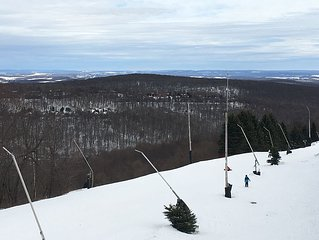SLOPE SIDE, Ski In Ski Out !!! Winter Special $175/night