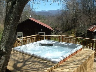 Chestnut Cabin: Privacy, Mountain Views, Hot Tub & Wi-Fi, Easy to Asheville