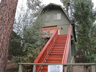 Bear's Trail - Adorable woodsy cabin with wonderful mountain and tree views fro