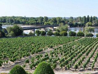 Vacances a Pouilly / Loire vue sur la Loire et les vignes classe 2 etoiles