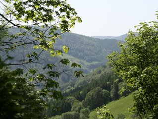 Self catering 1 bedroom apartment black forest Germany with balcony & garage